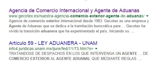 fotografia del resultado de google para agente de aduanas