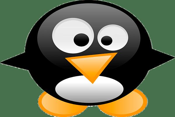 Icono de Penguin Google